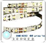 JazzWay LED  SMD 5050/60 IP20